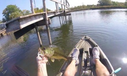 How to Get the Most Out of Late Summer Bass Fishing