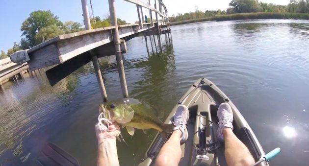 late summer bass fishing
