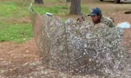 Is This Rolling, Reflective Blind a Genius Hunting Innovation, or Not So Much?