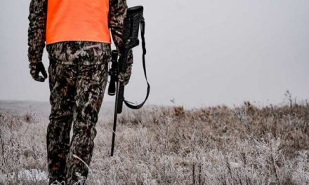 Must-Have Whitetail Gear for 2019
