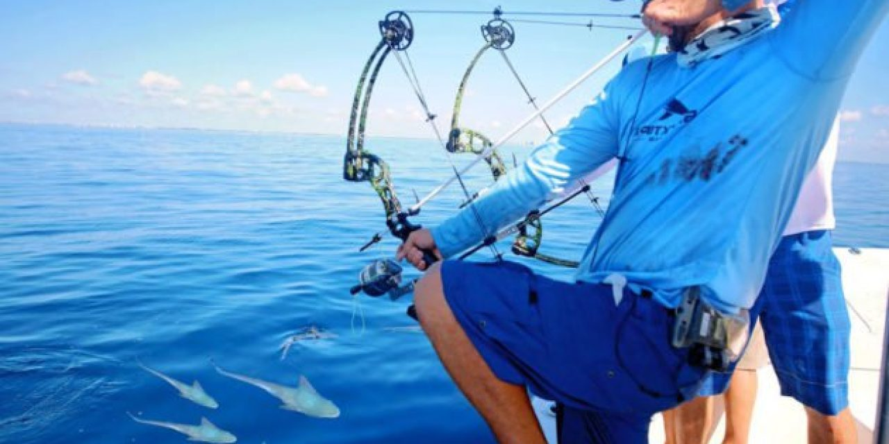 BlacktipH Goes Saltwater Bowfishing for Bonito