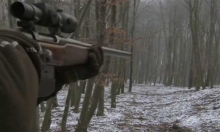 Expert German Marksman Takes Out an Entire Sounder of Hogs