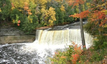 Plan Your Autumn Camping Trip Around These Peak Fall Colors Dates