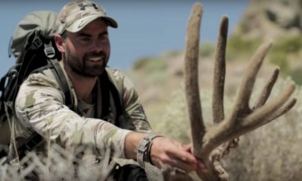 Watch Remi Warren's Deep History With Nevada Mule Deer Come to Fruition