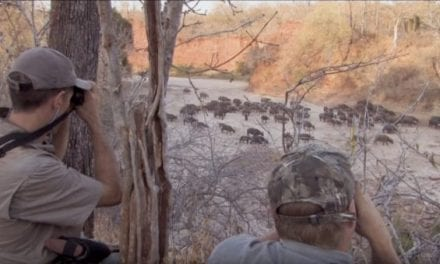 Here's a Perfect Response to Anti-Hunter Harassment