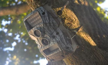 Keep Your Trail Cams and Treestands Safe With This Smart Gear