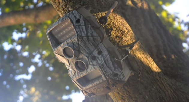 Trail Camera Theft Protection
