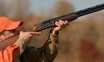 The 12 Best Upland Hunting Guns Available