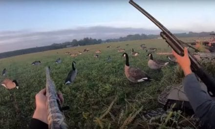 Watch These Guys Get a 7-Man Limit of Geese in Wisconsin