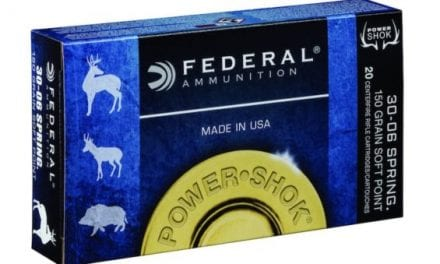 What You Need to Know About Federal Power Shok Ammo