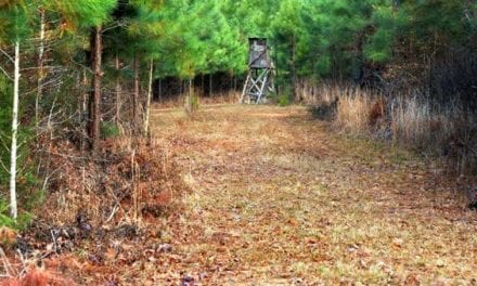 5 of the Worst Things You Can Do While Deer Hunting