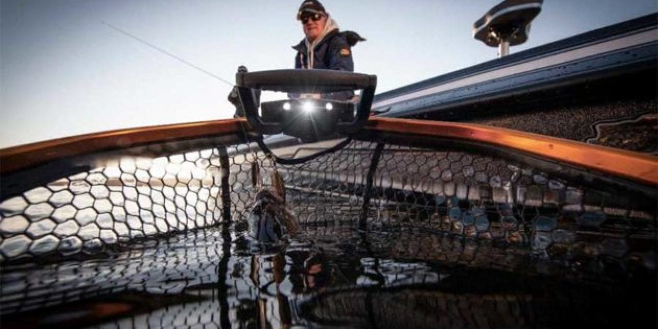 Frabill Trophy Haul Nets: Optimal for Conservation, Not to Mention Toothy Fish