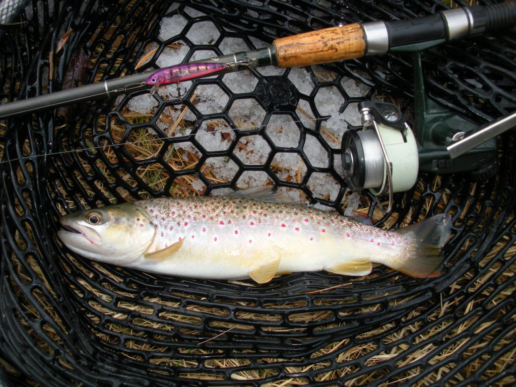 No Ice Required for this Winter Fishing