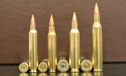 9 Rifle Cartridges With the Fastest Bullet Velocity
