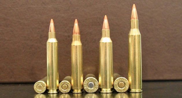 picture of 9 Rifle Cartridges With the Fastest Bullet Velocity 204 ruger 22-250 223 220 swift
