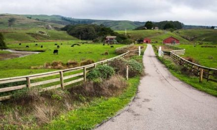 How to Find Homesteading Land