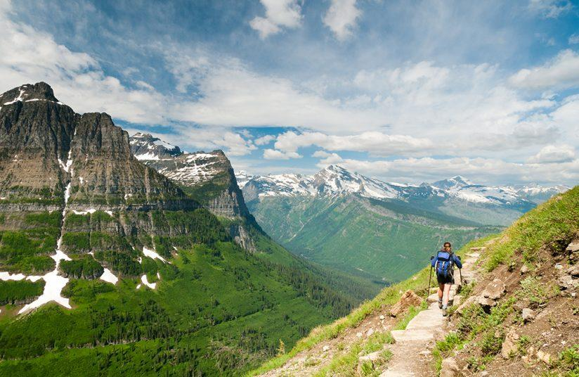 Highline Trail along the top of Logan Pass