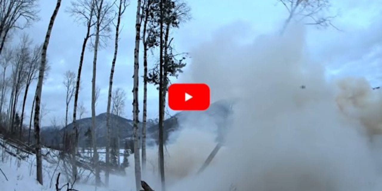 Canadian Rednecks Chop Down Tree with Large Tannerite Explosion
