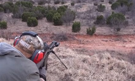 Hunter Tries Out a .50 Cal on a Feral Hog