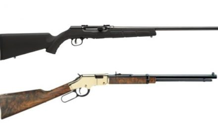 8 of the Top .17 HMR Rifles on the Market for Plinking and Varmint Hunting