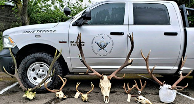 Oregon Poachers