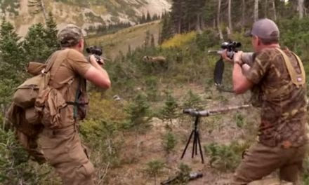 Flashback to the Time Steven Rinella Encountered a Charging Grizzly