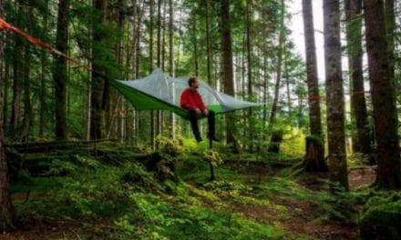 Set up a Hanging Tent at a Scenic Campground for a Breathtaking View