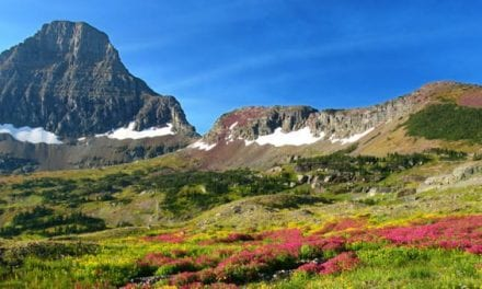 Great American Outdoors Act Earns Congressional Vote, Moves to President's Desk