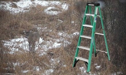 How to Turn a Step Ladder Into a Portable Hunting Stand