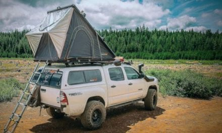 Roofnest Introduces Two New Falcon Models to Line of Rooftop Tents
