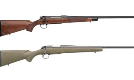 8 Solid Options for Hunting Rifles Chambered for .270 Winchester
