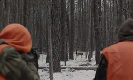 Intro From Prisoners is Still Perhaps Hollywood's Most Realistic Deer Hunting Scene