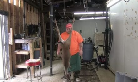 This Might Be the Fastest Deer Skinner Alive