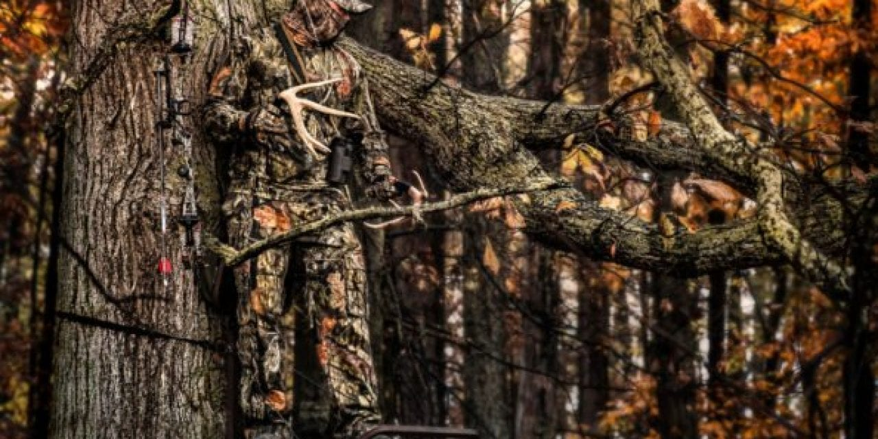 All the Things You'll Miss During Hunting Season, Ranked