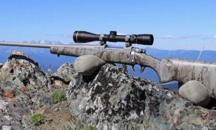 Here's What You Need to Know About the New Ruger Hawkeye FTW Hunter