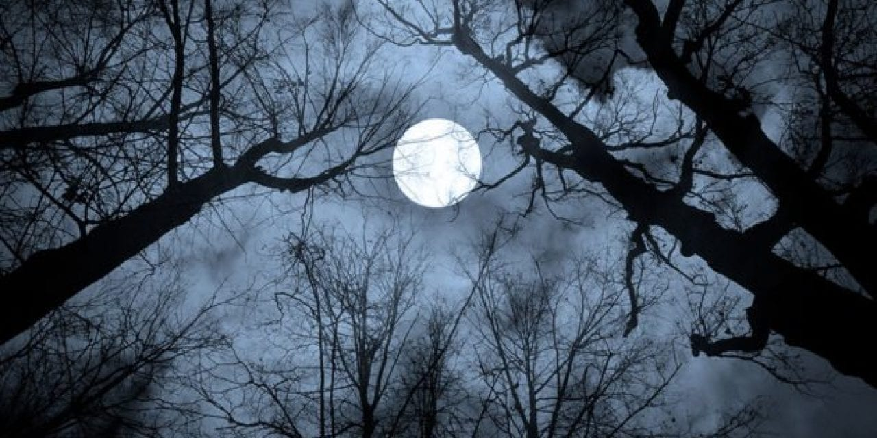 Hunter's Moon: What the Term Means and Where It Originated