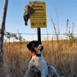 Tons of Tips for Hunting Public Lands