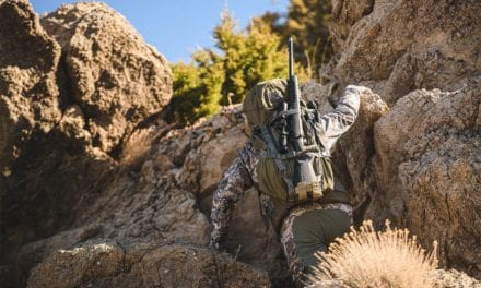Why Accufit Makes the Savage 110 Ultralite the Most Versatile Gun on the Market