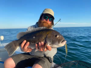 Rob Taylor - Big Tautog