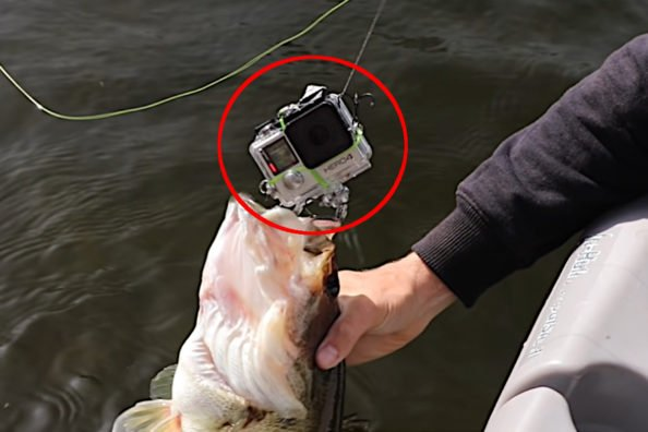 Angler Rigs GoPro As a Fishing Lure and Catches a Bass On It