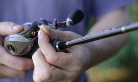 Finding the Best Fishing Line for Bass