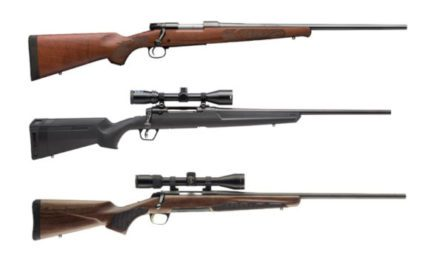 10 of the Best .243 Winchester Rifles for Deer and Varmint Hunting