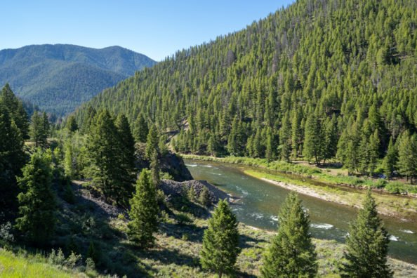 Remains of Idaho Bowhunter Missing for 53 Years Discovered by Another Hunter