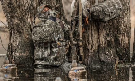 The 7 Best Duck Calls for the Marsh, Field, and Timber