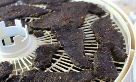 5 Best Venison Jerky Recipes From Around the Web