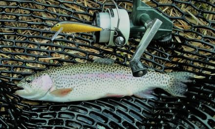 Update, Fall Trout Stocking 2021
