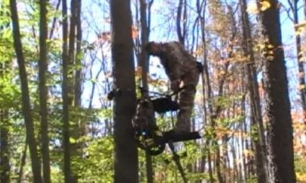 A Motorized Treestand? The TreeRider