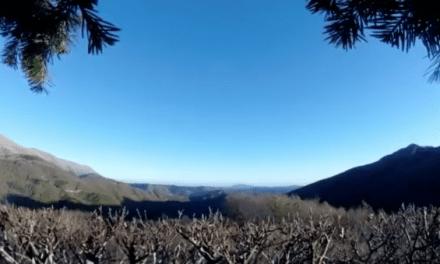 Italian Hunters Experience Serious Earthquake