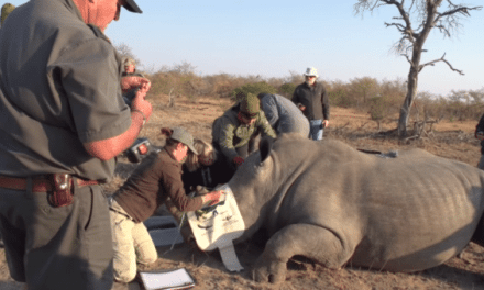 'The Perfect Shot' is the Perfect Hunting Guide Book