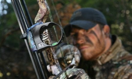 Deer Bowhunting Hot Spots in Mississippi